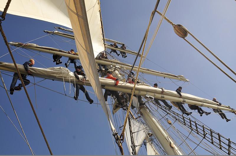 SSS Greif 08 Reffen der Segel auf der Rah Toern Ostsee 2014-09-27 QF Copyright Foto Knut Hildebrandt