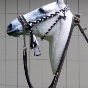 Fig.8. 'Hanson' bridle. Unlike the Kuwait bridle, the cheek pieces (ending in large tassels) are adjustable to fit horses of all sizes. The small tassel shows the point of attachment of the throat latch (Figs. 5 & 6) 2015 © Robert Cook, photo: Fridtjof Hanson