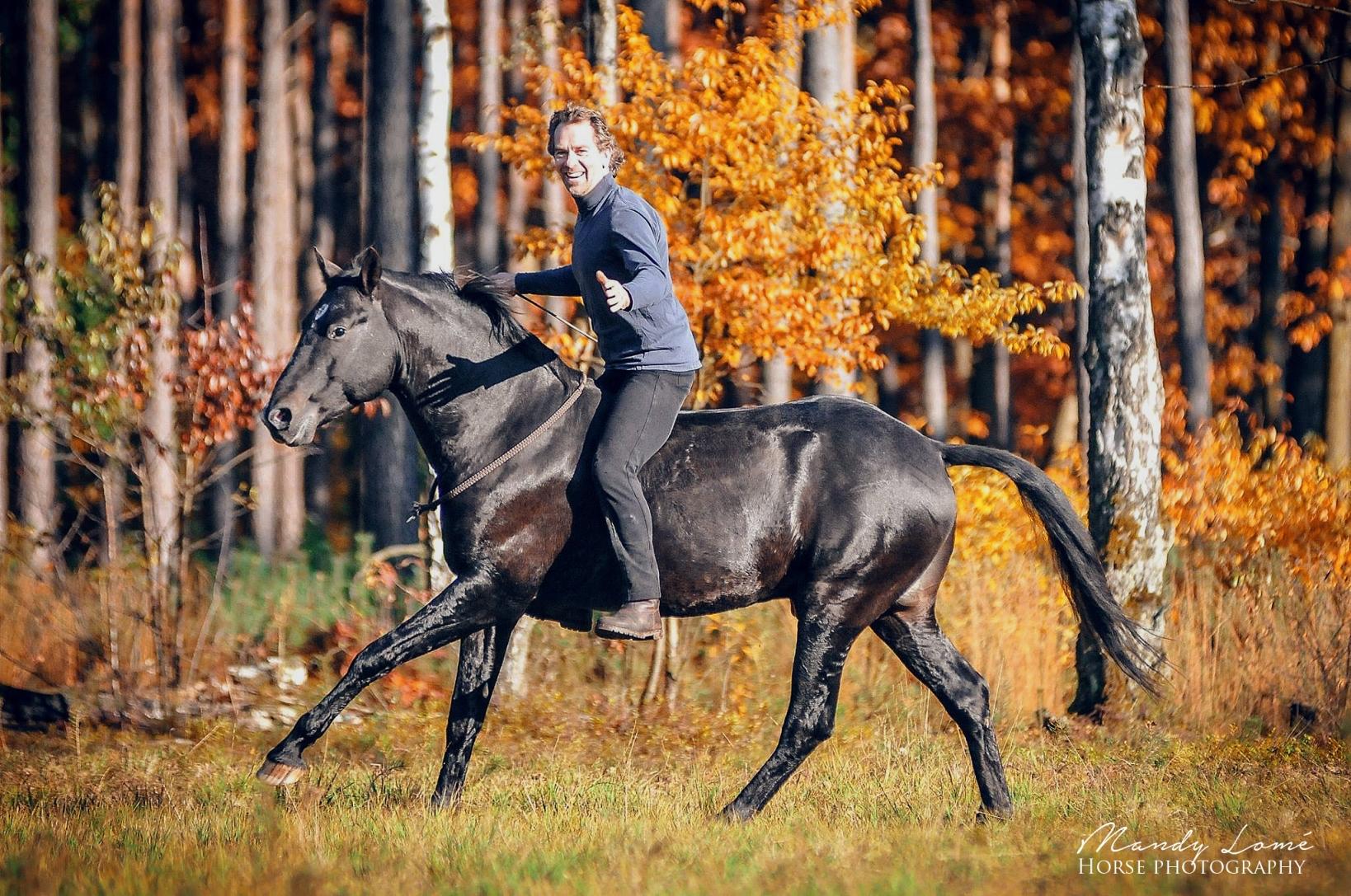 Liberty-Reiten mit Halsring auf Pasjo. Auch im Gelände ist sicheres Reiten mit Halsring möglich, wenn das Pferd gut ausgebildet ist und gegenseitiges Vertrauen zwischen Reiter und Pferd besteht, 2015© Mandy Lomé