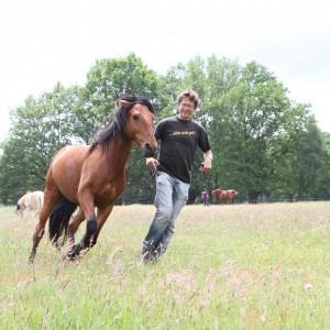 Bewegung ist gesund für Pferd und Mensch. BU: Bernd Pasche © Weinzierl, Foto: van Uden