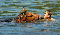 Die Bestimmung des Pferdes ist die Freiheit – Zu Besuch bei Vaclav Vydra in Tschechien