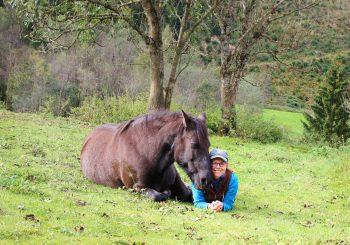 """Lisa Spitzer im Exklusivinterview: Ein """"Little Paradise"""" für Pferde in der Steiermark"""