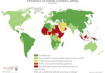 Ein Empathieproblem – Frauenfeindlichkeit und sexuelle Unterdrückung – Genitalverstümmelung, Zwangsmästen und Brustbügeln