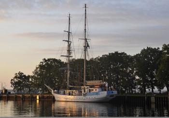 """Eine Kreuzfahrt mit dem Segelschulschiff """"Greif"""" auf der Ostsee"""